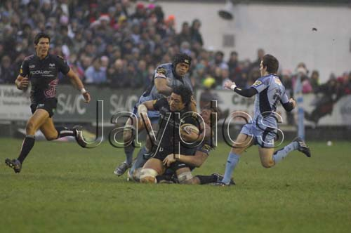 CardiffBlues v Ospreys22.jpg
