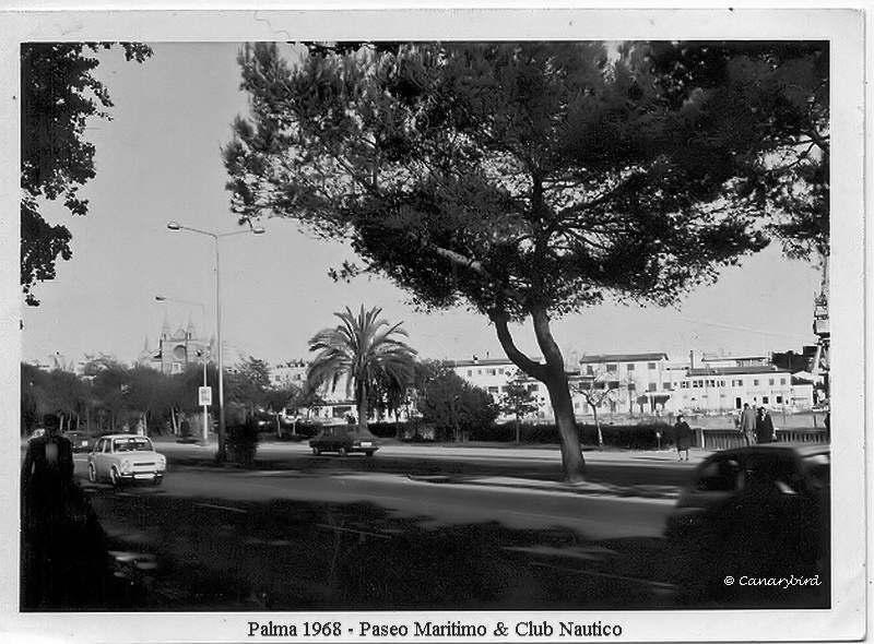 club nautico palma