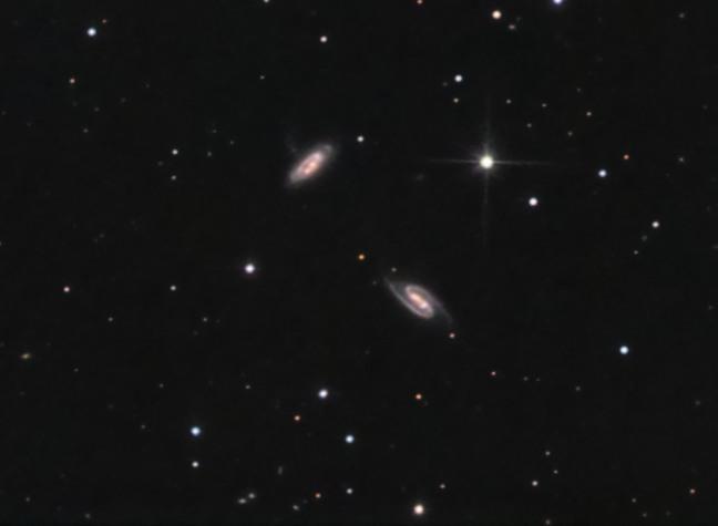 NGC 2856/4<br>(ARP 285)