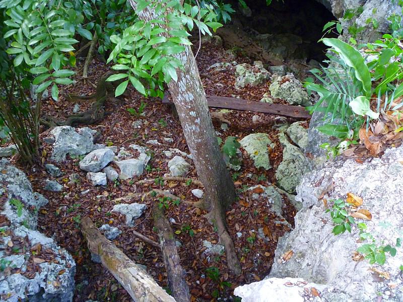 entrée dun cenote
