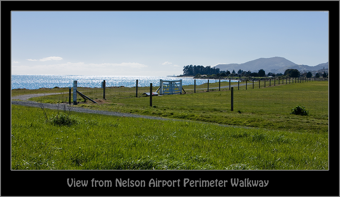 View from Nelson Airport Perimeter Walkway