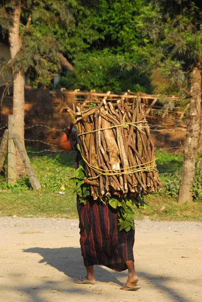 Woman carrying a large bundle of fire wood