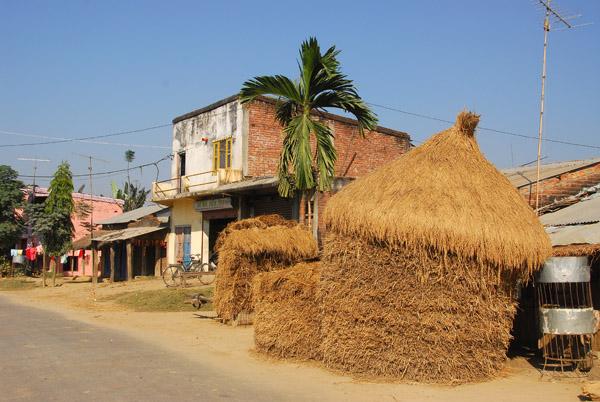 Rice stacks along the main road to Sauraha