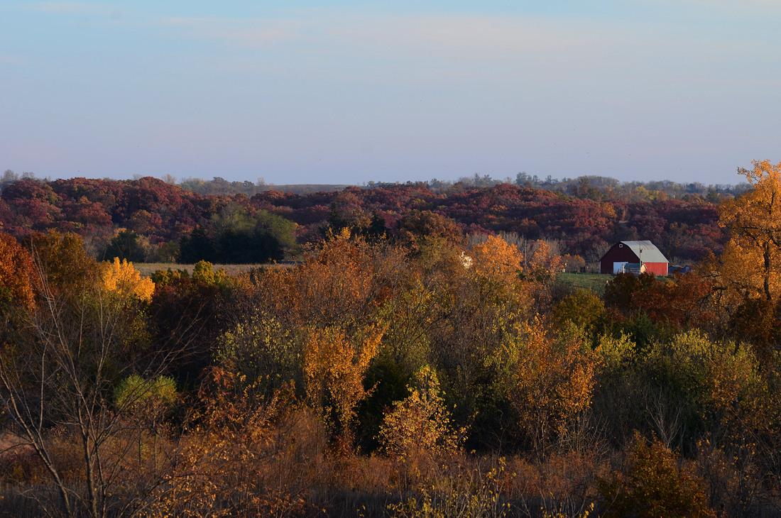 Worth County Barn in Fall