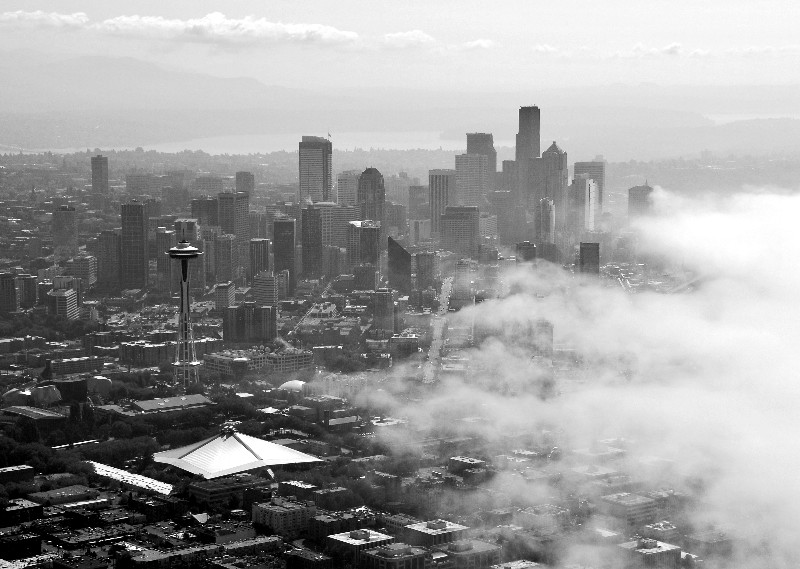 Seattle covers in fog