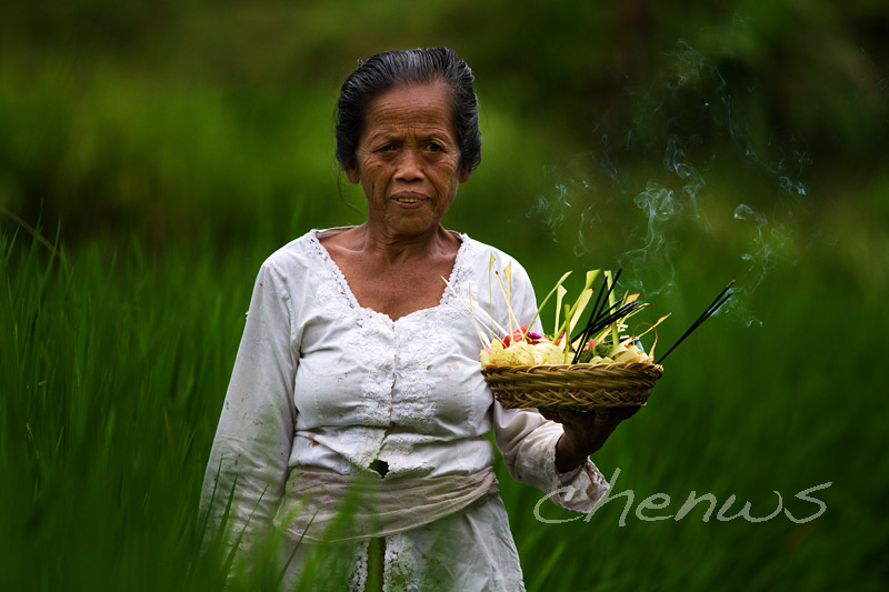Villager with prayer offerings (Bali)