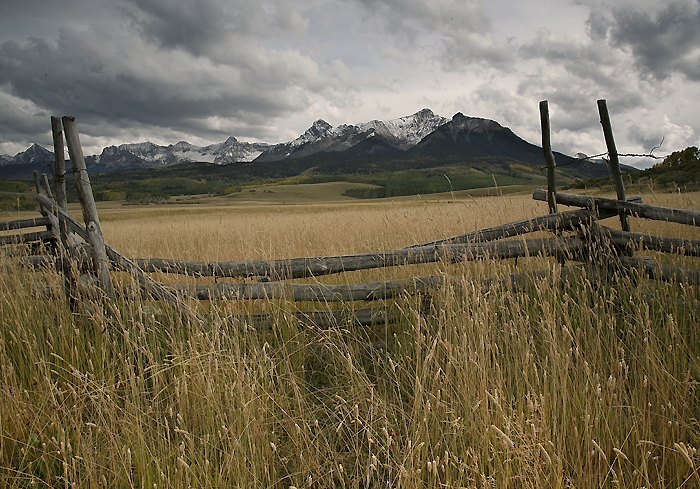 Fence And Silence