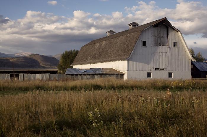 White Barn Near Monte Vista