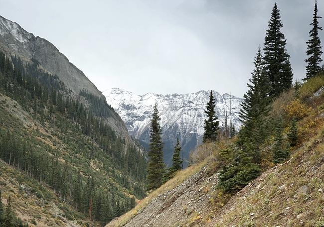 Stormy Alpine Loop View
