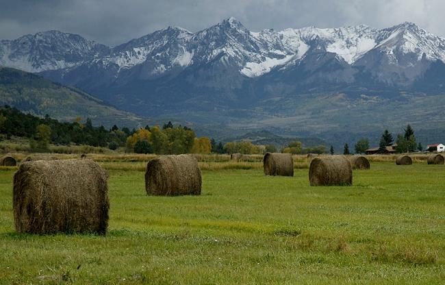 Hay Bails Near The RL Ranch