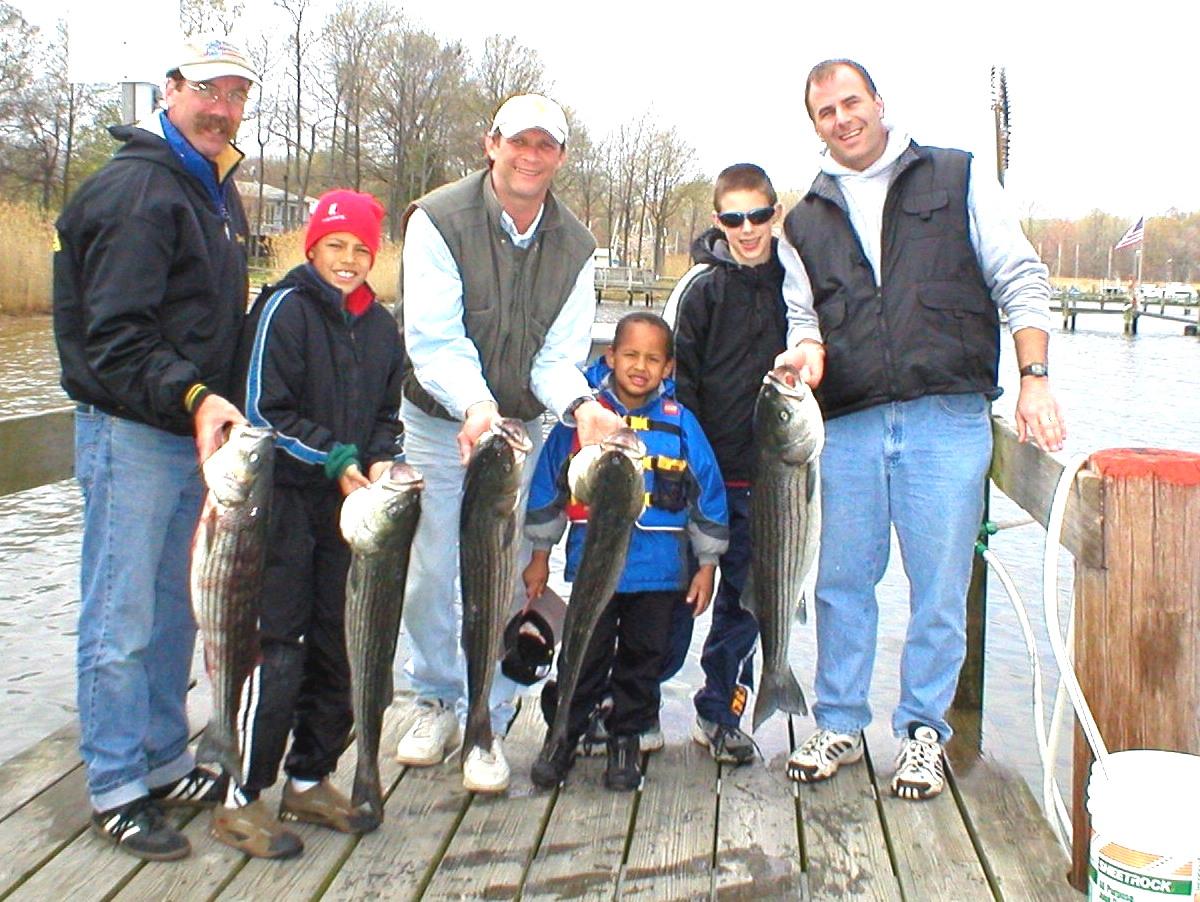Stews Fish Group.jpg