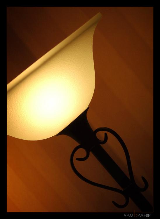 Angular Momentum of Light