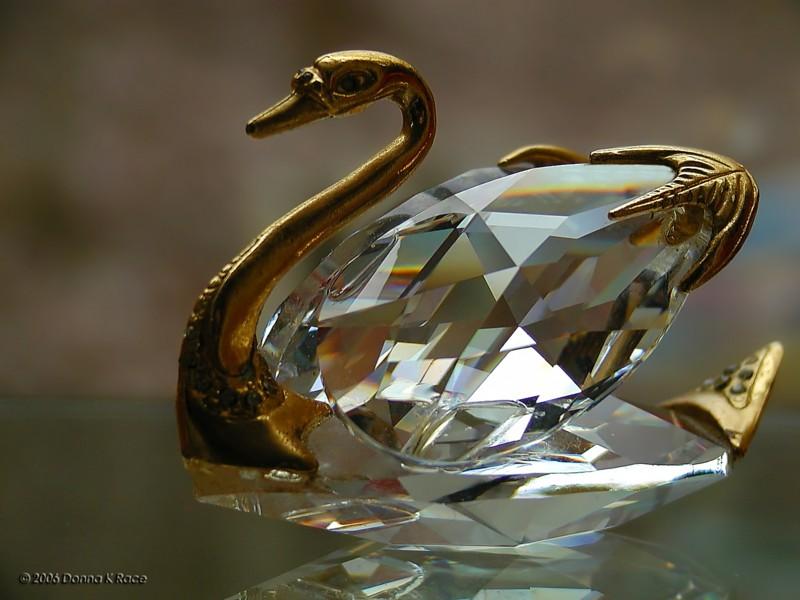 <b>Crystal Swan</b>