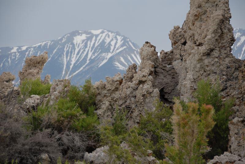 Tufa formations on Mono Lake 3