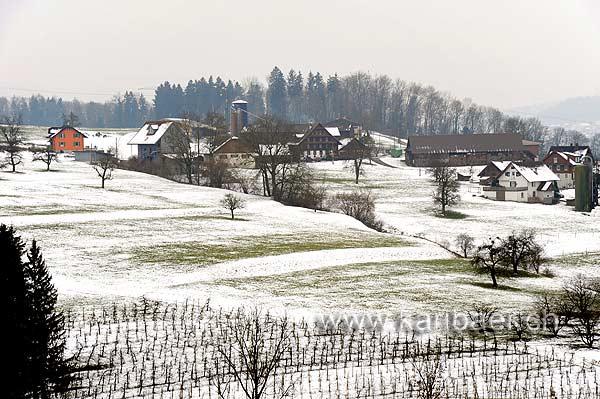 Hinterhünenberg (102792)