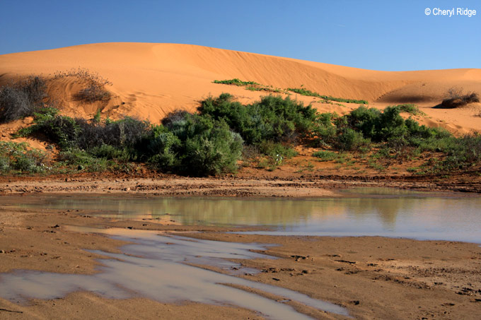 9356- Perry Sand hills and water
