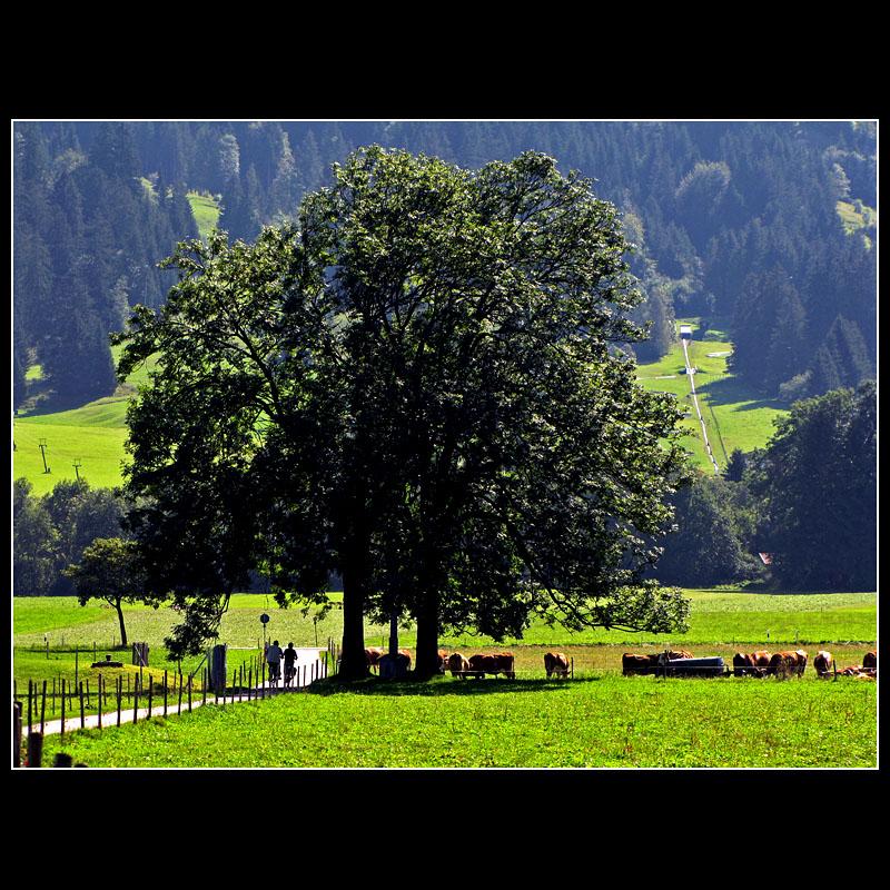 ...walking in German Bavaria... I