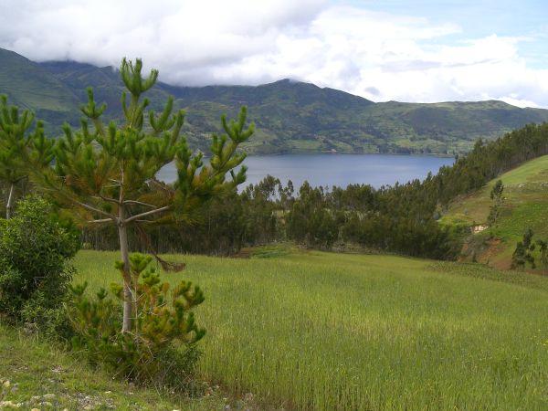 Laguna de Pacucha