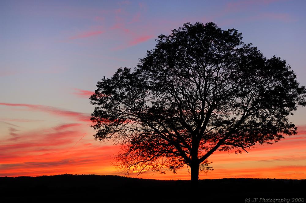 _JFF5137 Final Sunset copy.jpg