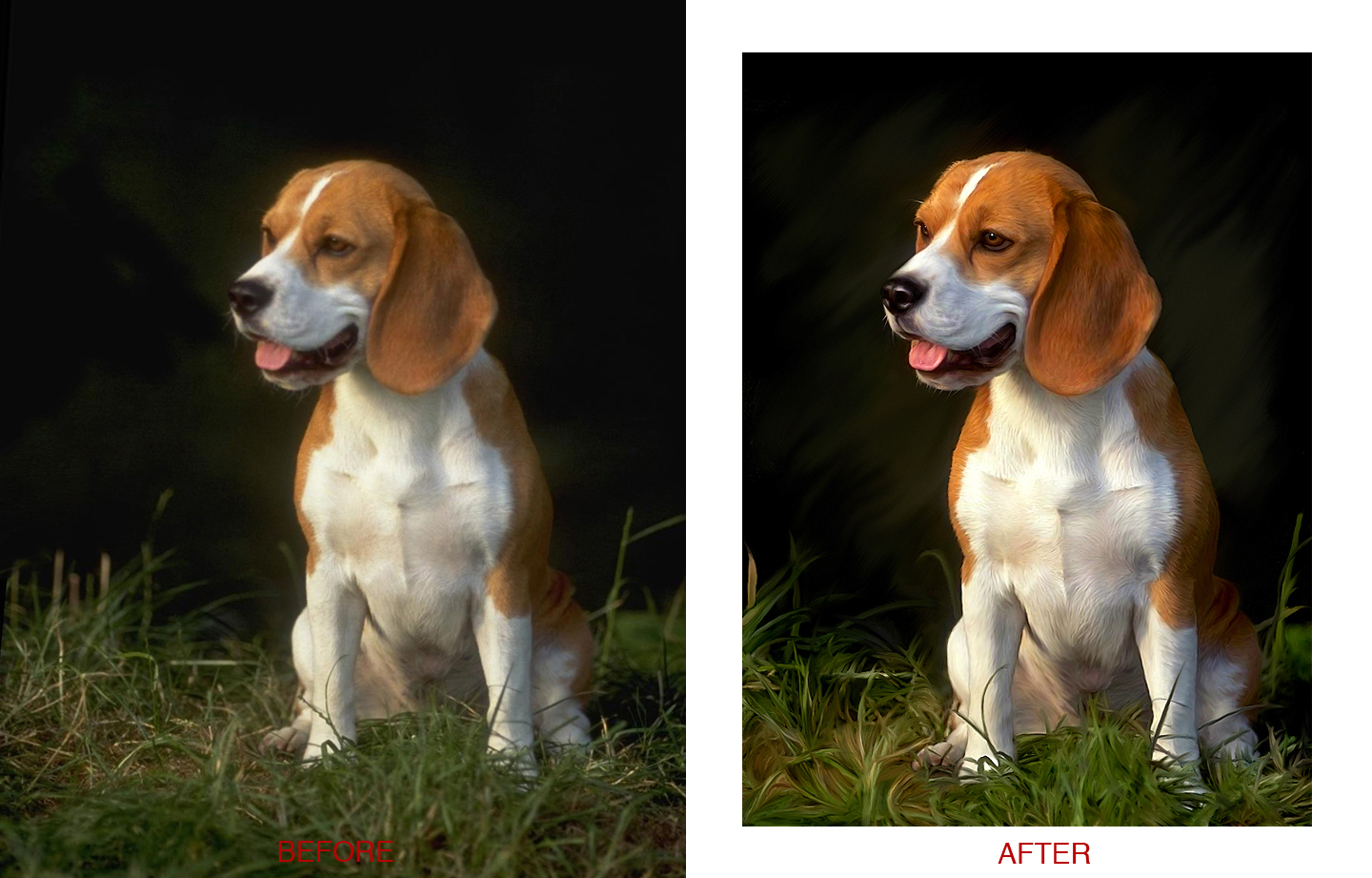 photoshop tutorial from image to painting adidap