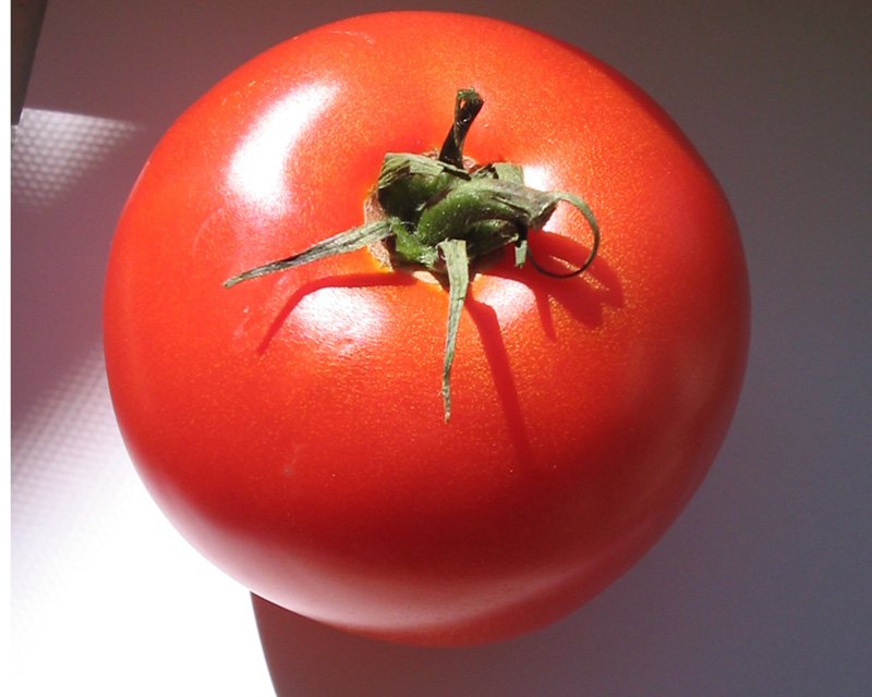 organic tomato 3