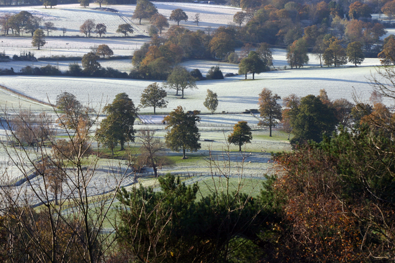 Holmbury Hill  Valley View
