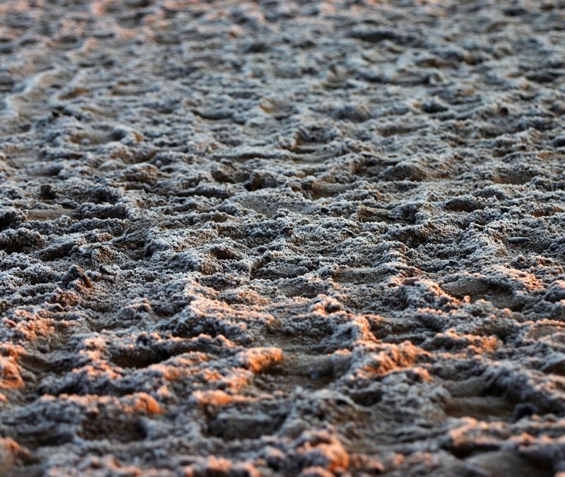 Frosty Footprints