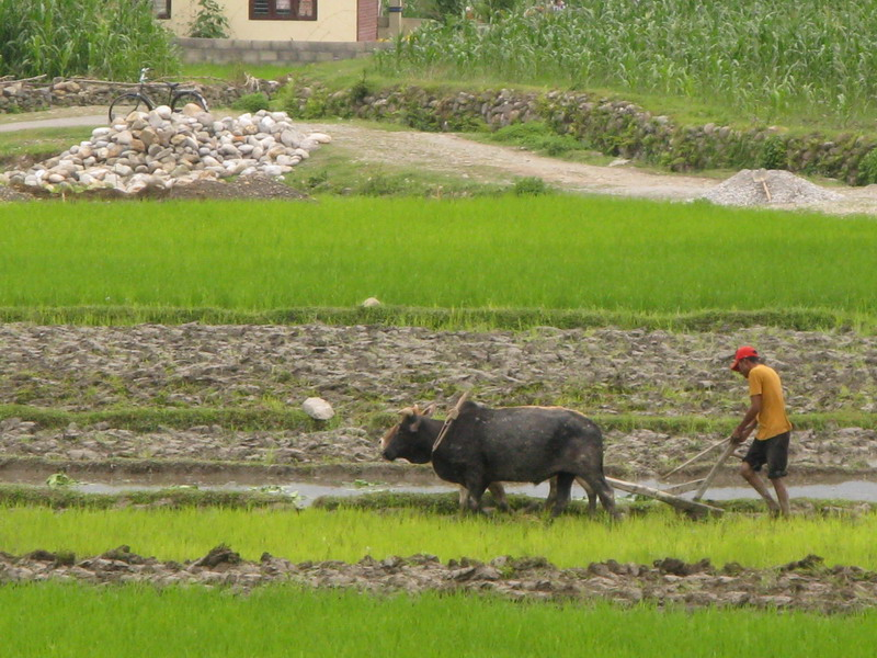 Nepal_007.JPG