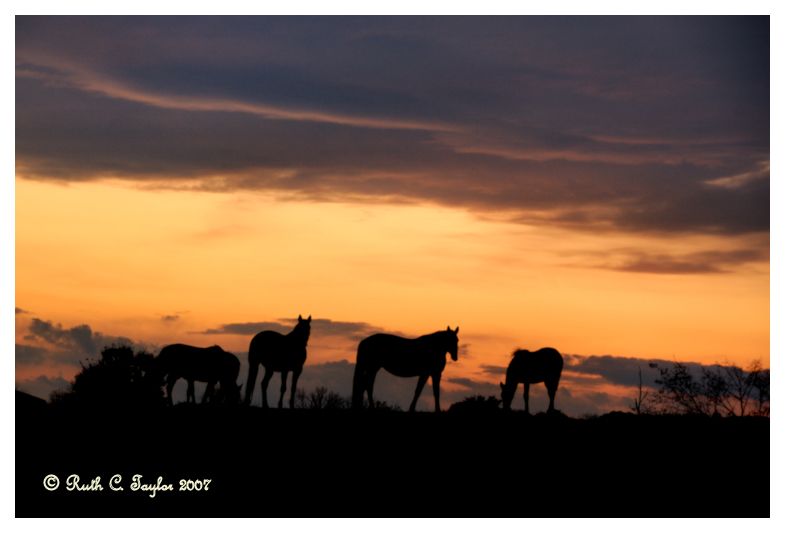 Sunset in Buckingham
