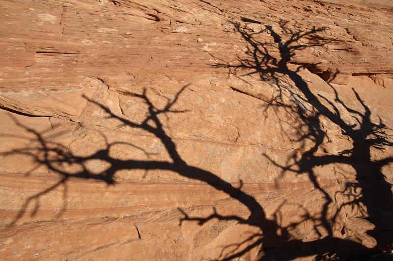 Near Mesa Arch