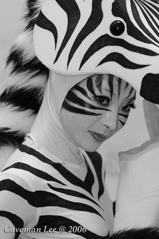 Zebra Beauty