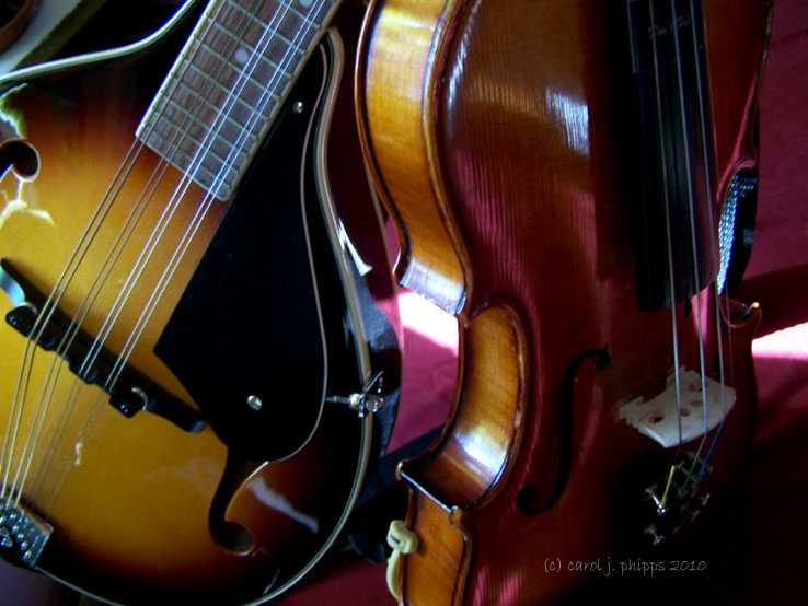 Different Instruments, Same Strings!
