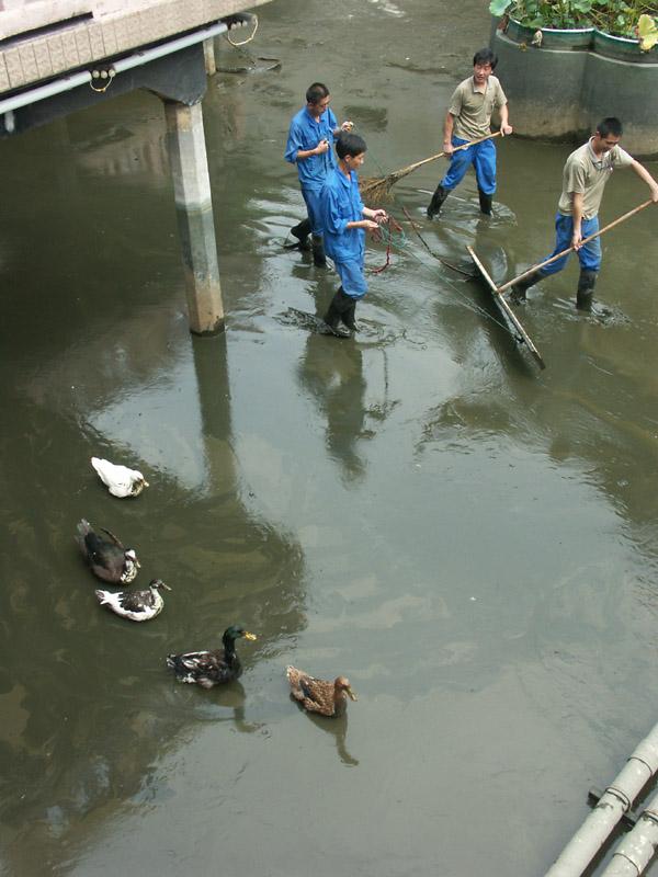 China2005-11.jpg