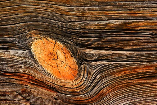 Weathered Wood 20060121