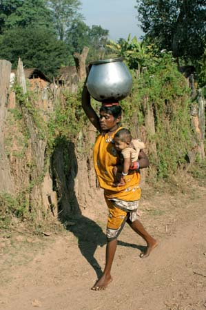 transport of water and baby