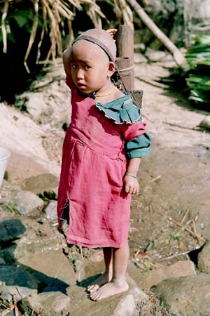 Fetching water in bamboo canes