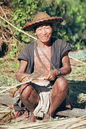 Mishmi splitting bamboo