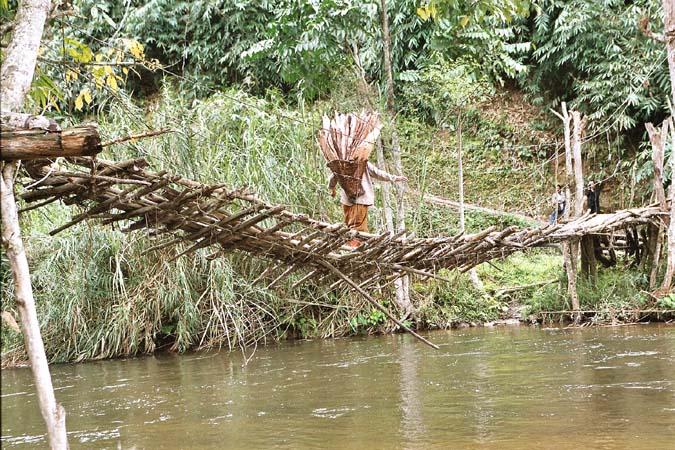 Suspension bridge in Hill Miri area