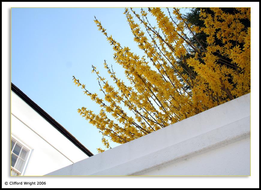 05_04_06 - Spring Sprung