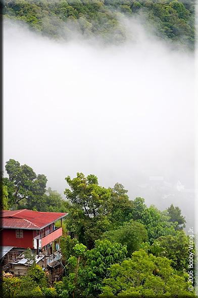 Sudden Fog Rise