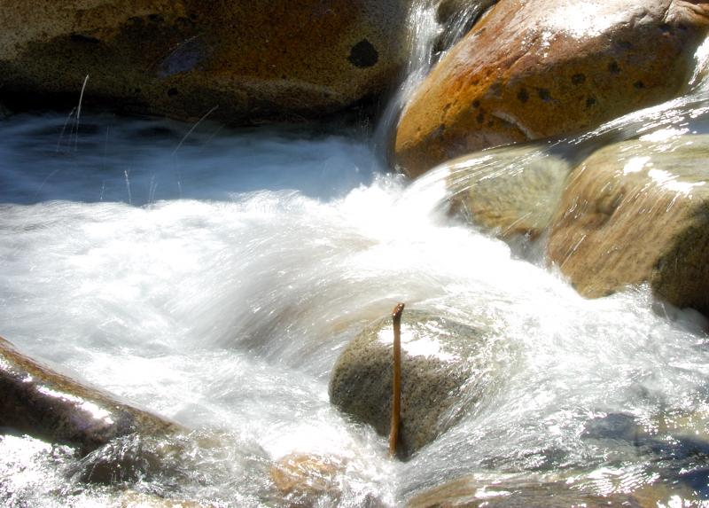 Lynn Canyon
