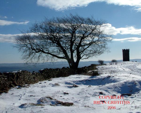 DSCF0001 SNOW FOLLY