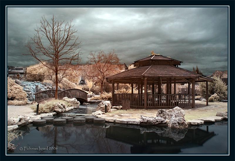 The Japanese garden II.