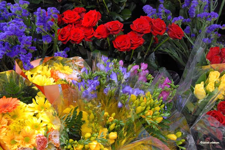 Flower Stall at Earls Court