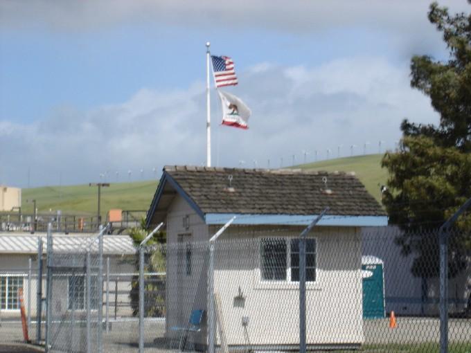 Flags as wind gauge!