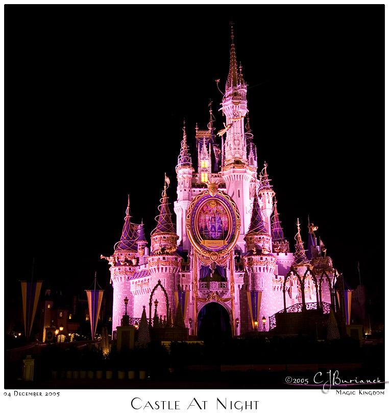 04Dec05 Castle at Night - 8514