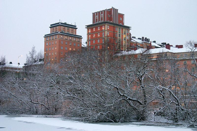 January 1: Like a castle behind the enchanted hedge