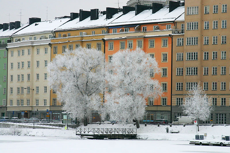 January 4: King Frost has visited Stockholm
