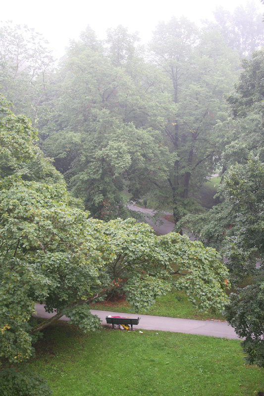 August 27: Sleeping in the park on a foggy morning