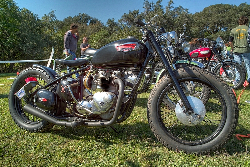 SDIM6645_6_7 - Triumph Bobber